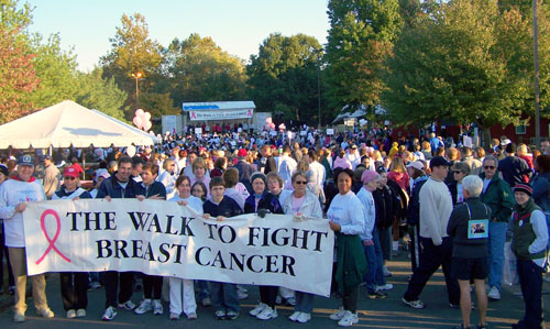 The Walk to Fight Breast Cancer